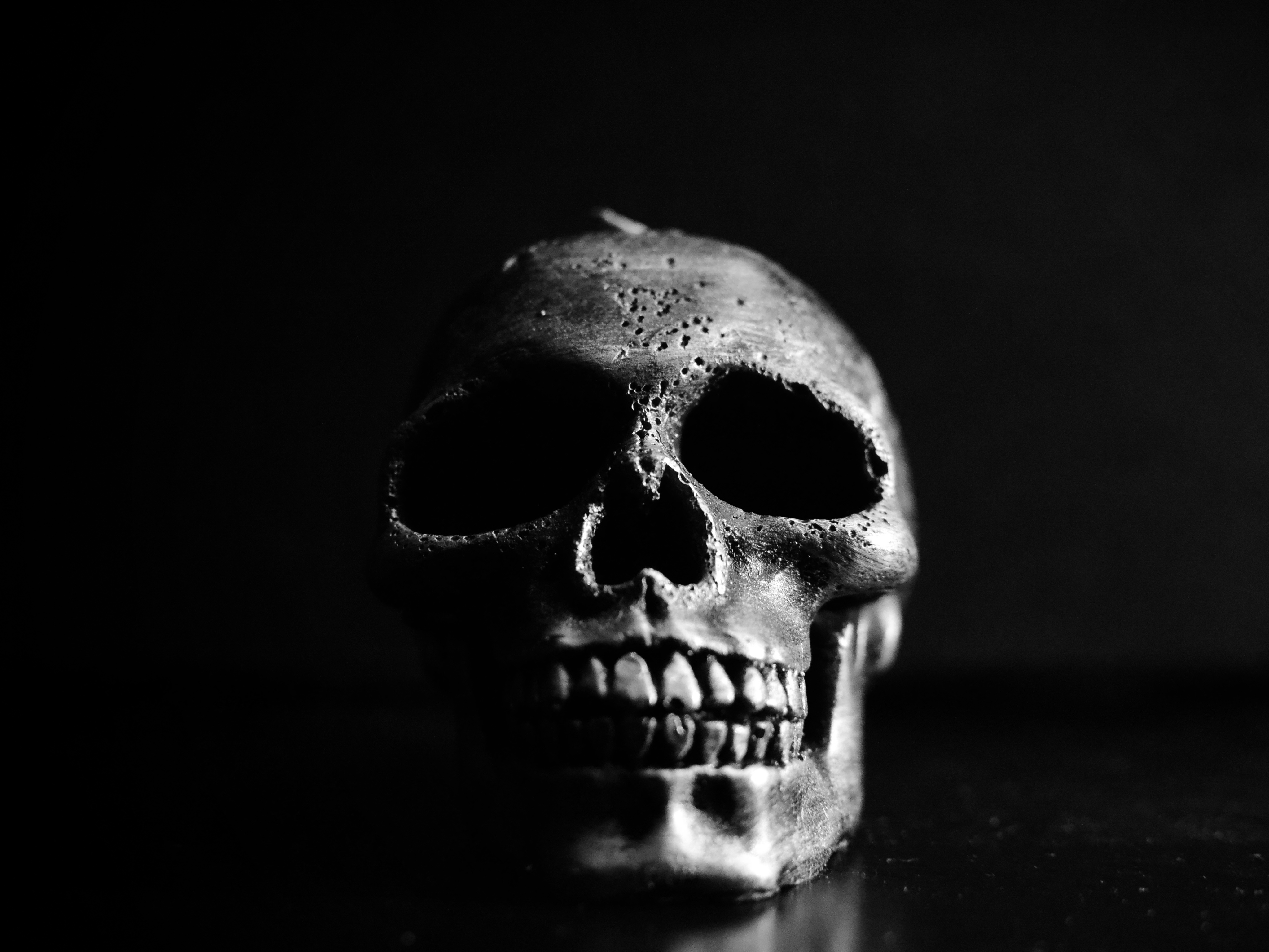 the skull BW